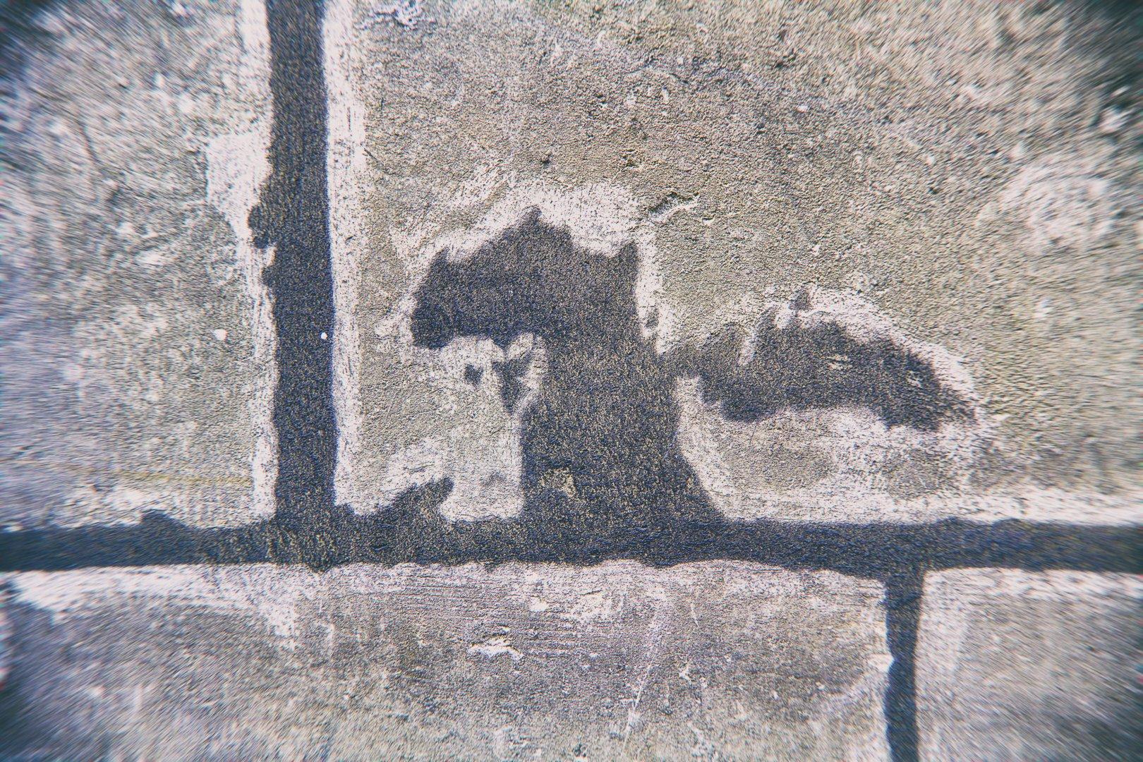traces sur un mur en forme de dragon